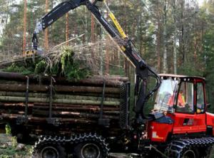 Rūpestis mišku – investicija į ateities kartas | Lietuvos Respublikos žemės ūkio ministerijos nuotr.