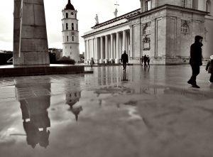 Vilniaus rotuse.lt