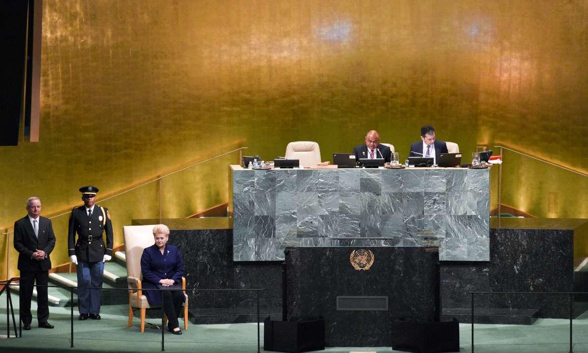 D. Grybauskaitė paragino Jungtines Tautas kilti į kovą su agresoriais | lrp.lt, R. Dačkaus nuotr.