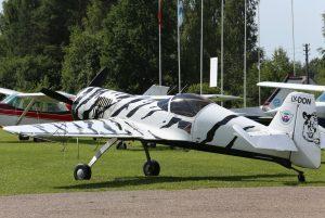 Lėktuvas | Alkas.lt, A. Sartanavičiaus nuotr.