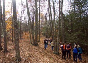Piliakalnio paieškos žygis   Neries regioninio parko direkcijos nuotr.