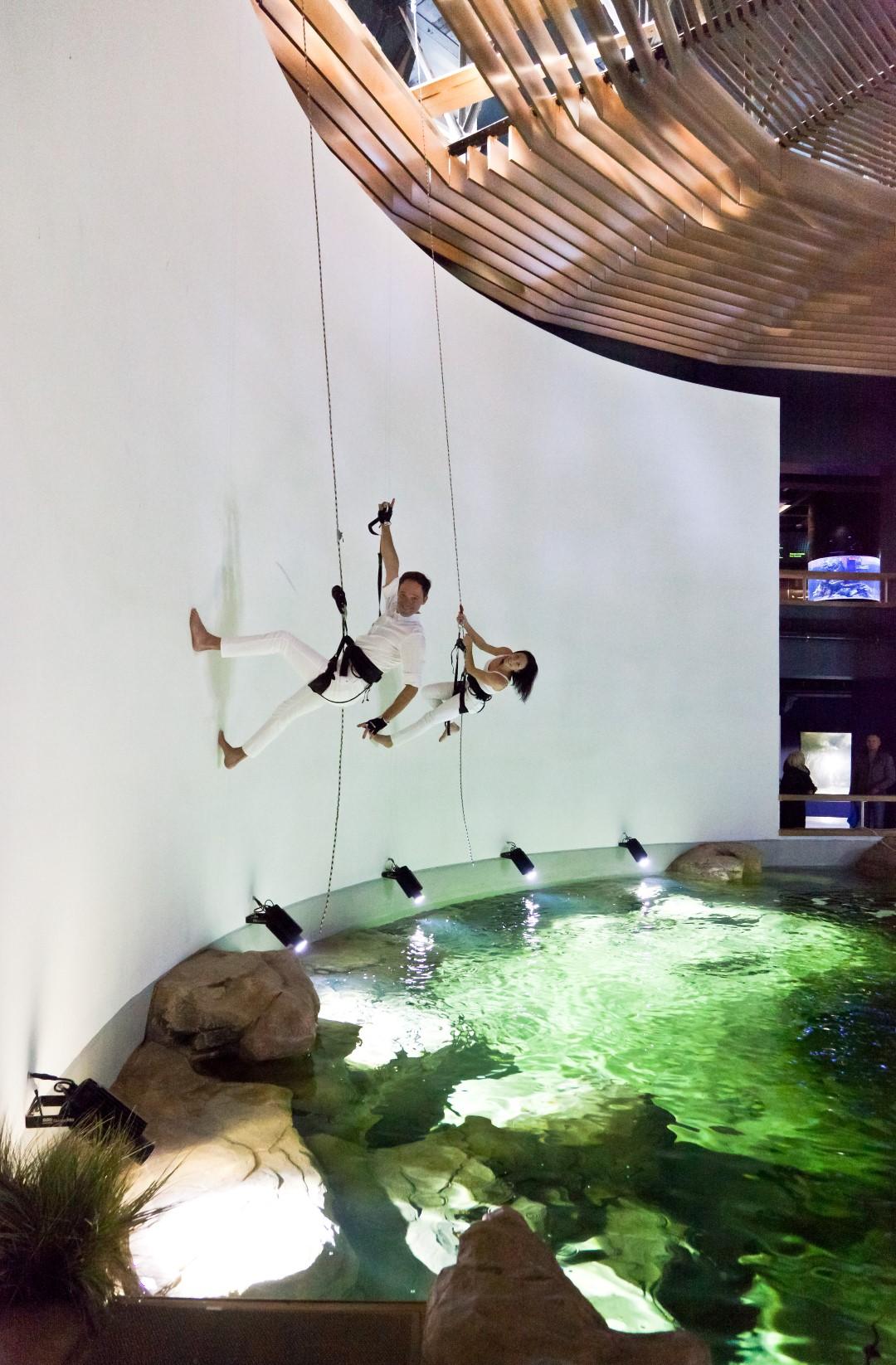 Akvariumo atidarymas – apie harmoniją ir grožį, kuris slypi vandenyno gelmėse | A. Mažūno nuotr.