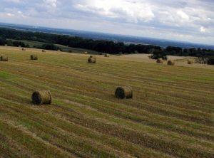 Žemės ūkis | zum.lt nuotr.