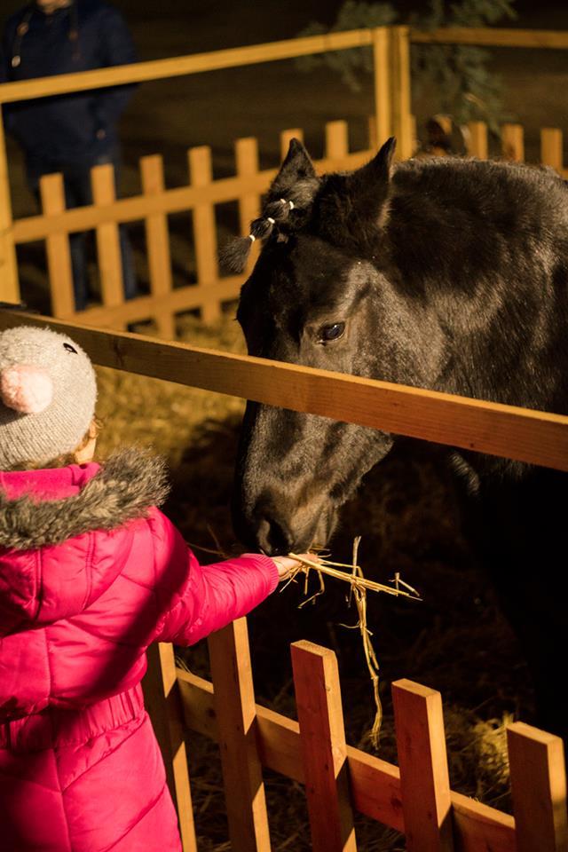 Kalėdinis miestelis Naisiuose – šventinis stebuklas kiekvienam | Rengėjų nuotr.