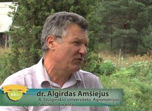 Algirdas Amšiejus | youtube.comg nuotr.