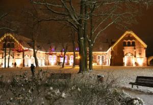 Raudondvario menų inkubatorius | Kauno rajono savivaldybės nuotr.