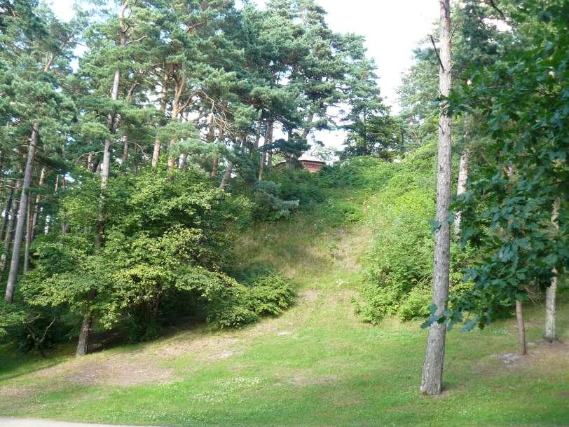 8 pav. Garsusis Birutės kalnas Palangoje – vėjo supustyta kopa | V. Baltrūno nuotr.