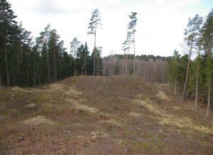 Naujasodžio piliakalnis II | A. Strazdo nuotr.