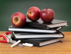 Švietimo ir mokslo ministerija inicijuoja vadovėlių leidybos pakeitimus | Pixabay nuotr.