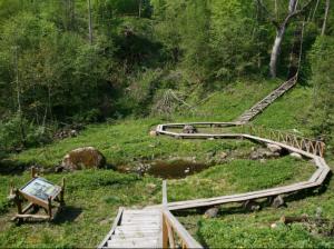 Jurkiškio upelio pažintinis takas | vstt.lt nuotr.