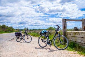 Specialistai pataria, kaip pasiruošti dviračių sezonui | Pixabay nuotr.