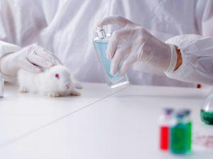 Bandymai su gyvūnais | AP Images/European Union-EP nuotr.