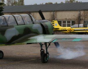 Sportinis lėktuvas | Alkas.lt, A. Sartanavičiaus nuotr.