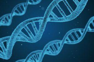 Genų raiškos tyrimai – įrankis ateities medicinai   Pixabay nuotr.