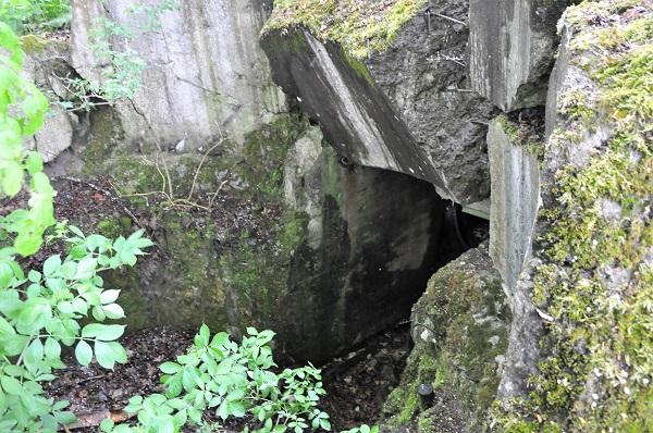 II pasaulinio karo bunkerio likučiai   superkeliones.lt nuotr.