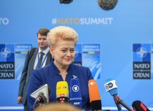 Prezidentė dalyvauja NATO valstybių vadovų susitikime   lrp.lt nuotr.