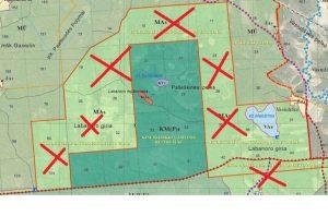Kiauneliškio rezervatas saugo Labanoro girios sengirės likutį (285 ha). Steigiant rezervatą didžioji dalis apylinkių buvo iškapota plynai bijant didesnių sugriežtinimų. Maža to, vėliau ir paties rezervato plotas buvo sumažintas (anksčiau dalis jo driekėsi ir kitapus plento Balto ežero link). Šiuo metu aplink šią saugomą sengirę taip pat leidžiamos plynės atvejiniais kirtimais. Mano rekomendacijos būtų tokios pat kaip ir dėl Girutiškio rezervato. Reziumuojant galima pasakyti, kad nauja Aplinkos ministerijos siūloma tvarka teigiamai paveiks tik nedidelį Labanoro regioninio parko plotą. Naujos plynės ir toliau piktins vietinius gyventojus bei lankytojus, griaus Labanoro girios ekosistemos tvarumą, menkins šios saugomos teritorijos vardą, bet, žinoma, tol, kol mes tai leisime.