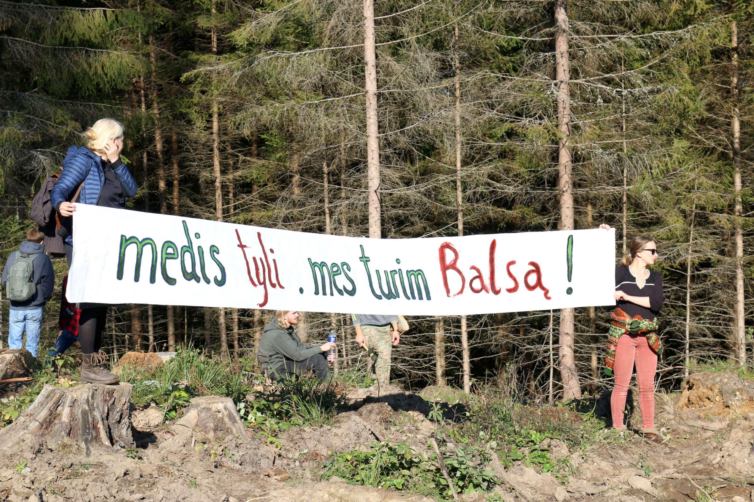 Žygis miškams išsaugoti | Alkas.lt, V. Balkutės nuotr.