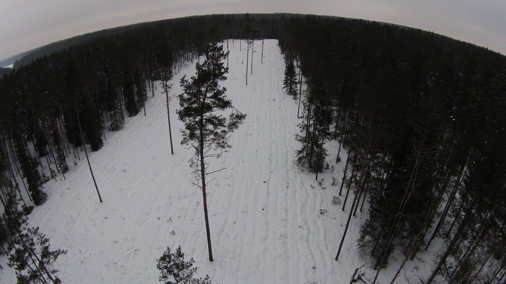Labanoro regioninio parko Alnio ežero apylinkės | A.Gaidamavičiaus nuot.