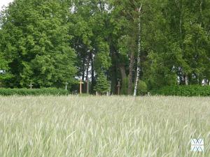 Šlikų kapinės | D.Vaitkevičienės nuotr.