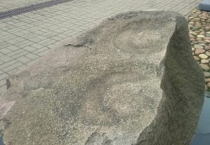 Vėžionių (Šalčininkų r.) akmens paviršiuje - dvi išgludintos lėkštės.   V. Vaitkevičiaus nuotr.