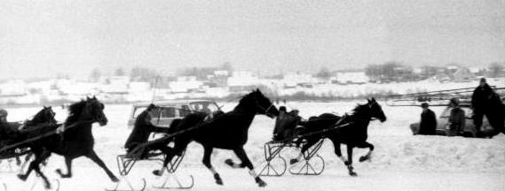 Sartų žirgų lenktynės 1985 m. | Sartų ir Gražutės regioninių parkų direkcijos nuotr.