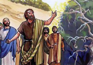 Kristus prakeikia jam neįtikusį figmedį | benjamingeneration.net nuotr.
