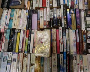 Knygos | Alkas.lt, A. Sartanavičiaus nuotr.