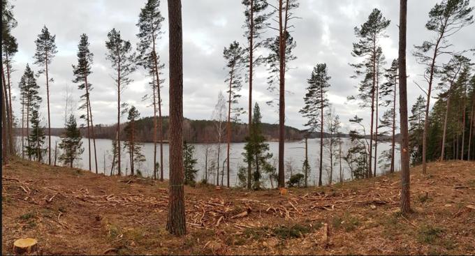 Ilgiausio Lietuvos ežero Aiseto pakrantė. Aiseto kraštovaizdžio draustinis. Labanoro regioninis parkas | M.Kaukėno nuotr.