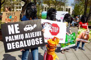 Orangutangais persirengę jaunuoliai protestavo prieš palmių aliejaus žalą | Rengėjų nuotr.