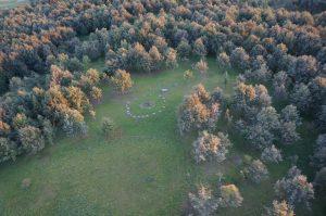 Aukščiausia Lietuvos tautinio atgimimo ąžuolyno vieta – Aukuro kalnelis | lnm.lt nuotr.