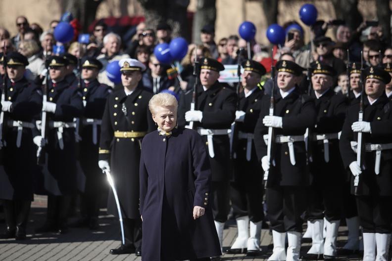 Pagrindinis Lietuvos įstojimo į NATO 15-ųjų metinių šventinis renginys S. Daukanto aikštėje Vilniuje | srž. sp. I. Budzeikaitės nuotr.