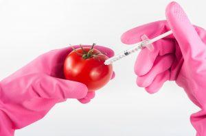 GMO | Pixabay nuotr.