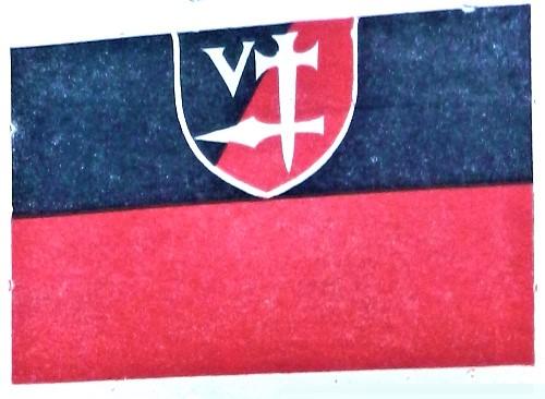 LNP (Lietuvos nacionalistų partijos) Vėliava. 1941 birželio sukilimo minėjimas Kaune | A.Kulikausko nuotr.
