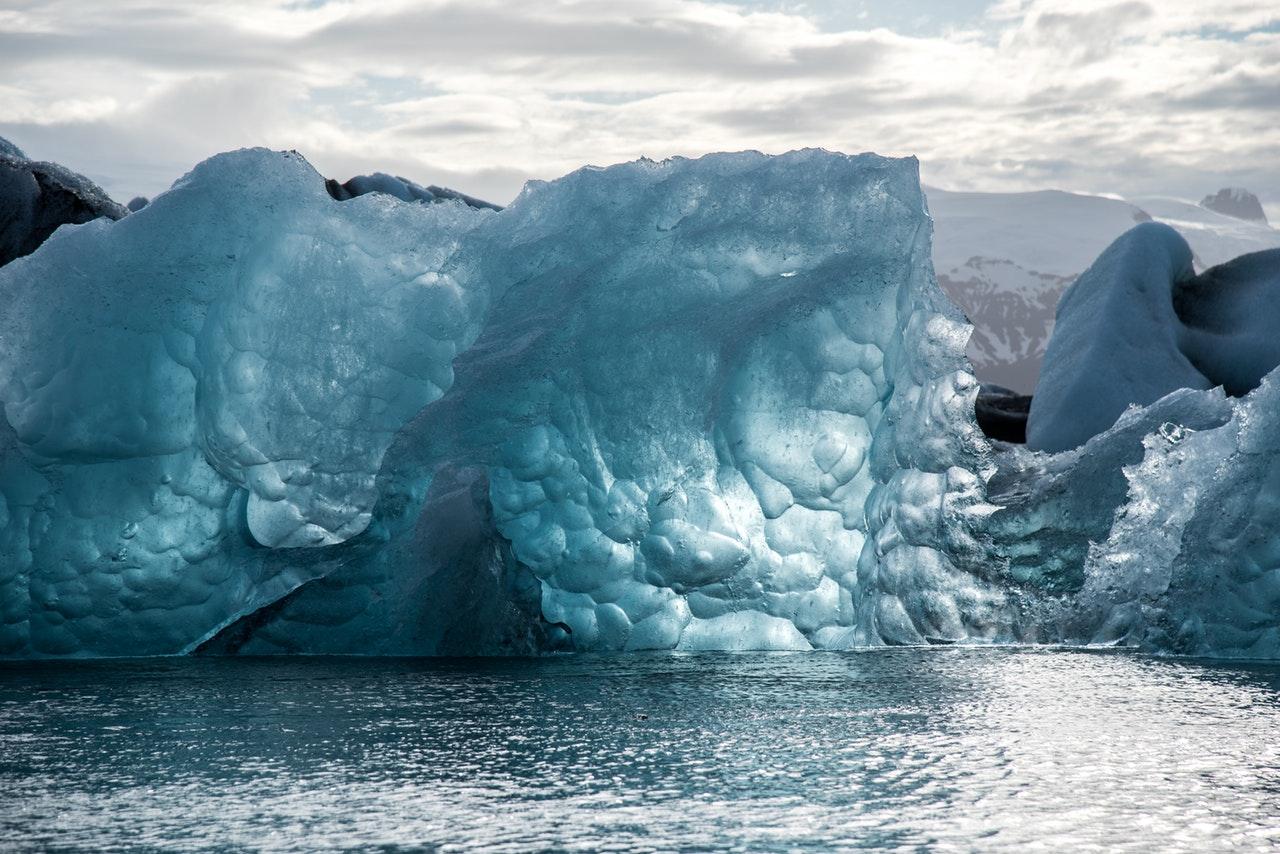 Klimato kaita | Vytauto Didžiojo universiteto nuotr.