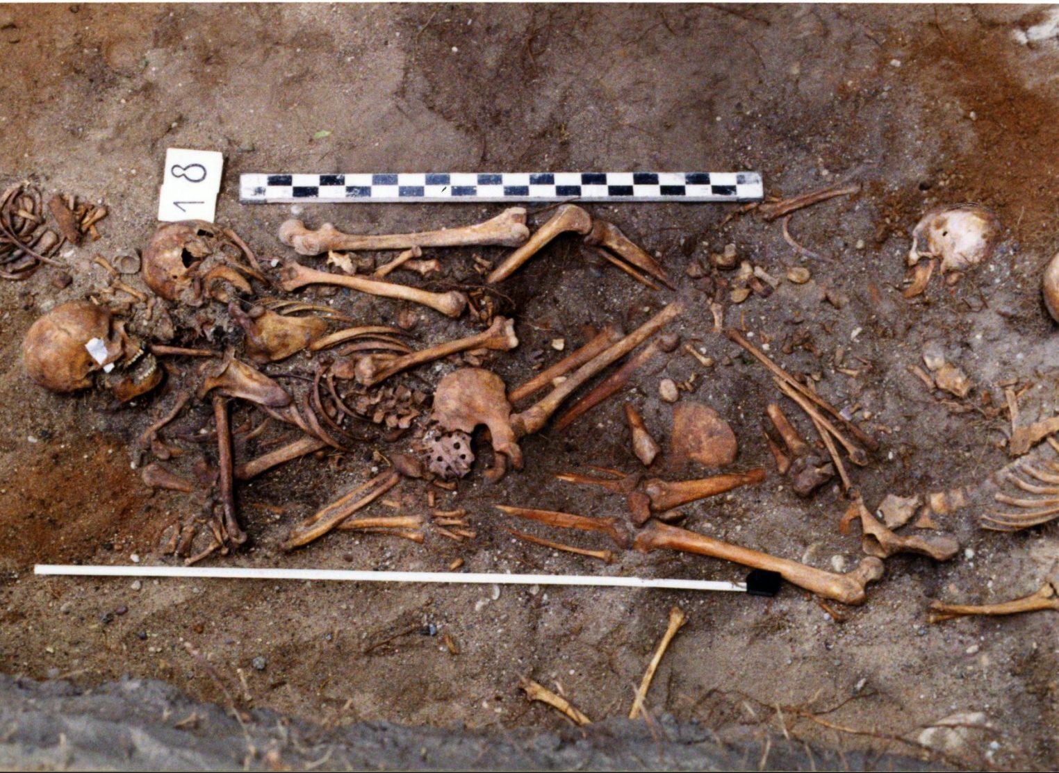 Masinėje kapavietėje buvusiose Tuskulėnų arklidėse rasti 611 žmonių palaikai. 1995 m. | LGGRTC it LYA archyvų nuotr.