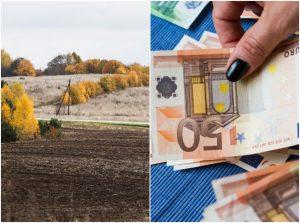 Žemės mokesčiui sumokėti liko trys savaitės | V. Skaraičio nuotr.