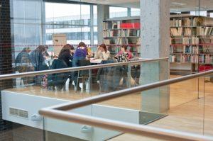 Užsienio lietuviai, baltistikos centrų ir kiti užsienio studentai kviečiami į lietuvių kalbos ir kultūros žiemos kursus Lietuvos aukštosiose mokyklose | Evgenijos Levin nuotr.