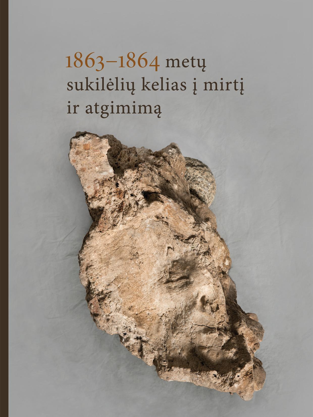 """Monografija """"1863-1864 metų sukilėlių kelias į mirtį ir atgimimą""""   Lietuvos nacionalinio muziejaus nuotr."""