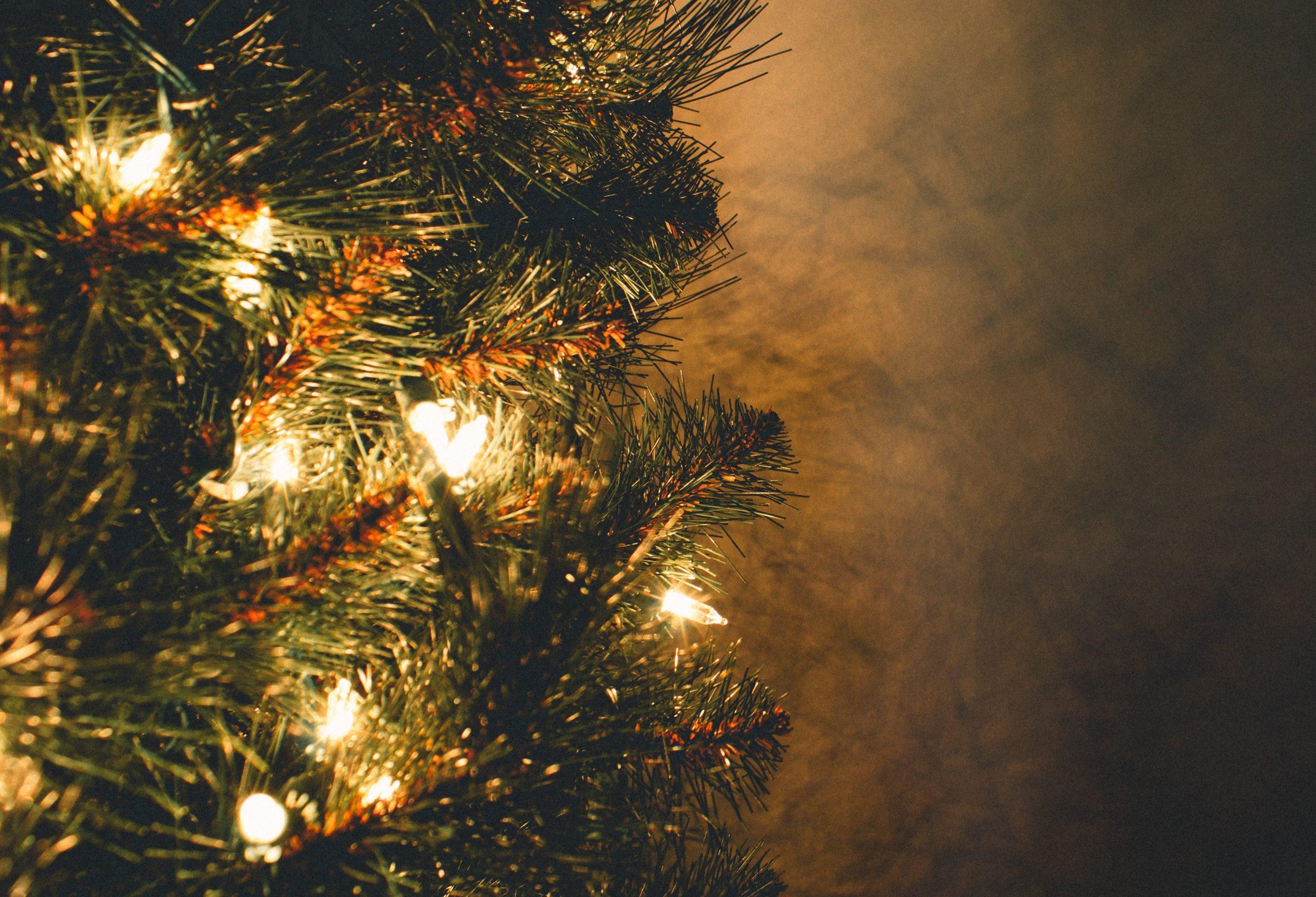 Kalėdų eglutė | vdu.lt nuotr.