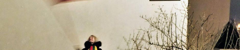 Policija sulaikė aktyvią K. Škirpos gynėja už mojavimą tautine vėliava   V. Sankirtos nuotr.