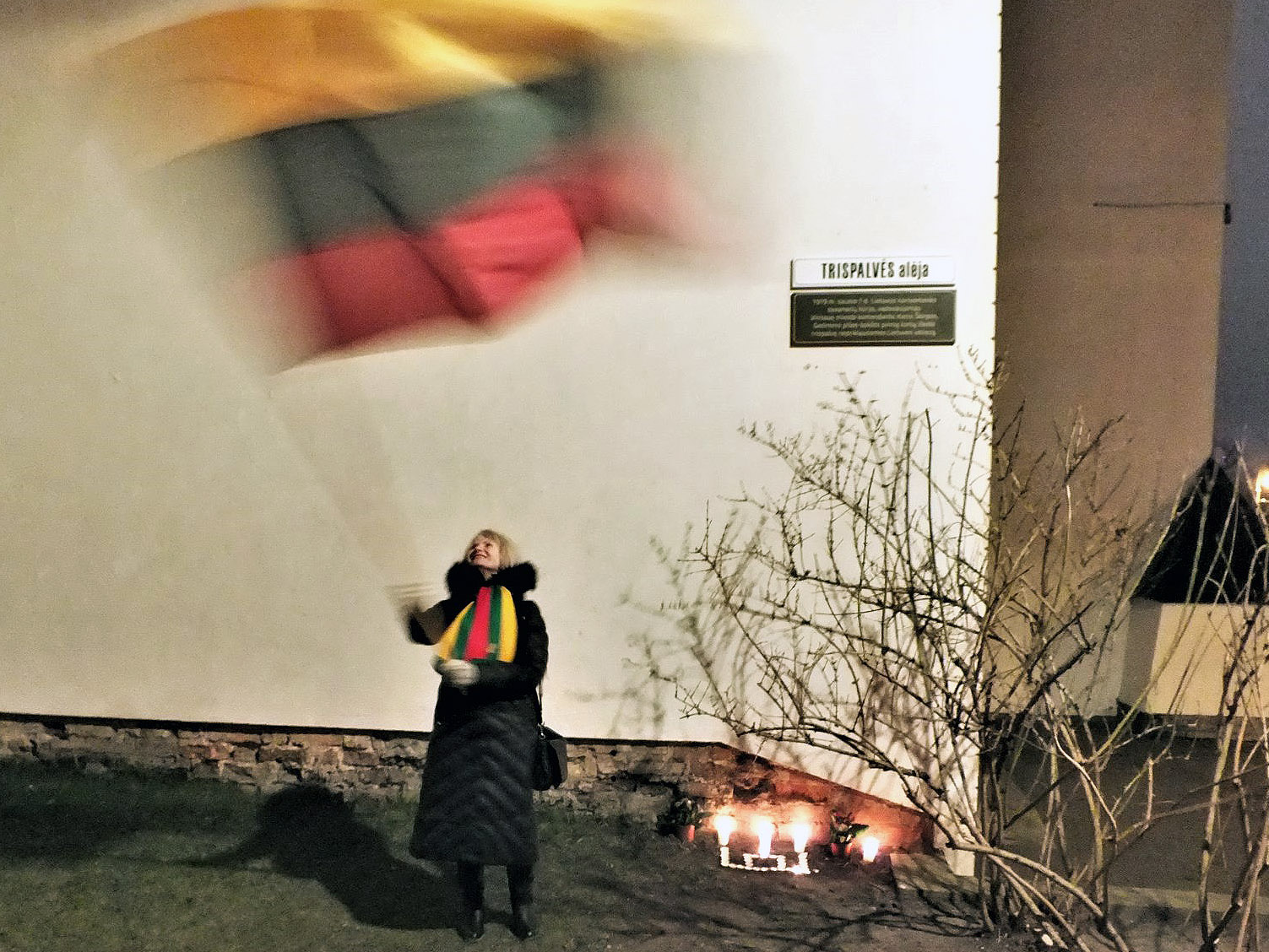 Policija sulaikė aktyvią K. Škirpos gynėja už mojavimą tautine vėliava | V. Sankirtos nuotr.