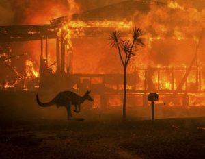 Gaisrai Australijoje | Metju Eboto (Matthew Abbott) / NewYork Times / REDUX / EYEVINE nuotr.