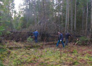 STT įžvelgia piktnaudžiavimo riziką Miškų ir Saugomų teritorijų įstatymų pakeitimuose