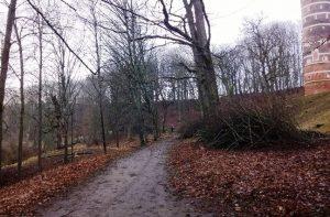 Medžių praretinimai Panemunės pilies peizažiniame parke atvėrė pilį, vaizdą į Nemuną | M. Jakelaičio nuotr.