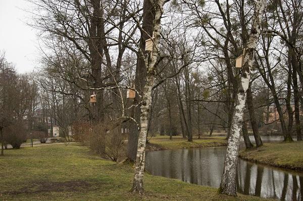Inkilai paukščiams   VDU Botanikos sodo nuotr.