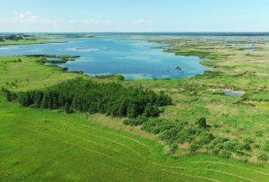 Žuvinto biosferos rezervatas | Baltijos aplinkos forumo nuotr.