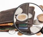 Piniginis išlaikymas | pixabay.com nuotr.