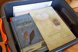 Lituanistines pasaulio mokyklėles jau trečią kartą pasieks lietuviškos knygos   lrv.lt nuotr.