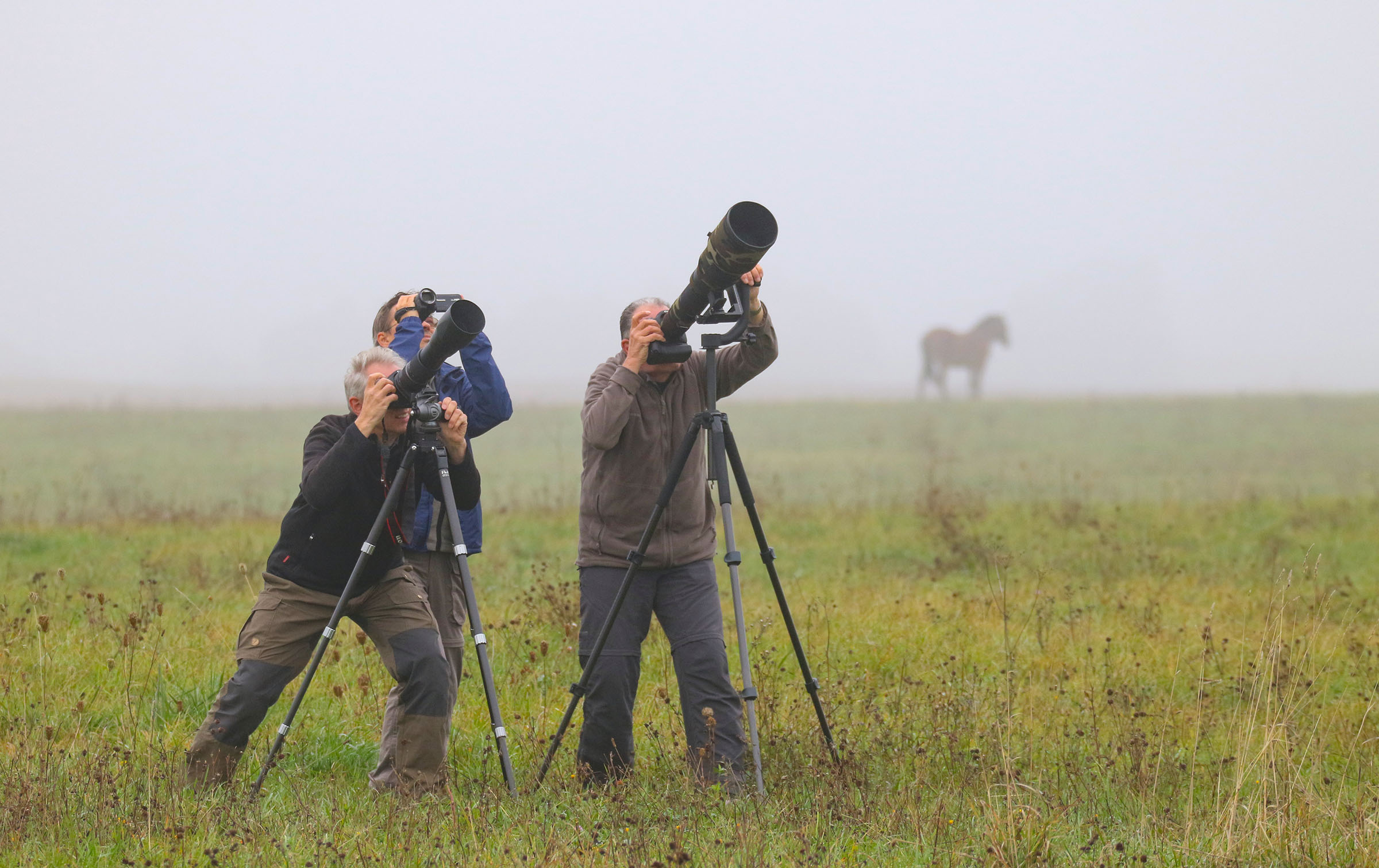 Gamtos fotografai | M. Karlono nuotr.